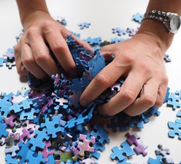 Het plezier van puzzelen ontdekken